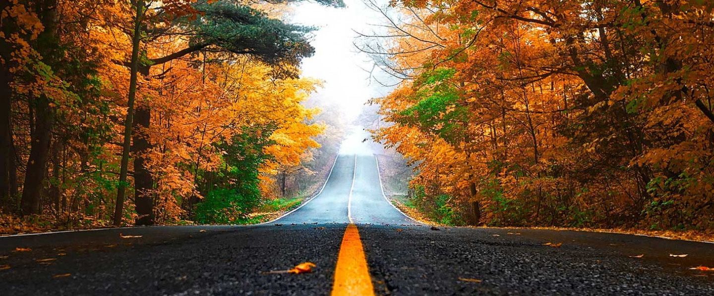 Happy Fall! Make Sure Your Vehicle Is Ready For The Open Road!